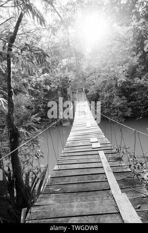 Puente de madera épica colgando sobre río selvático como viajes de aventura en impresionantes escenas en blanco y negro Imagen De Stock