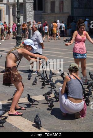 Los turistas dándole de comer a las palomas en st. Mark's Square, la región del Veneto, Venecia, Italia Imagen De Stock