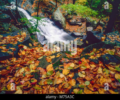 Electric Brook Falls, Schooleys's Mountain Park, Morris County, New Jerssey Imagen De Stock