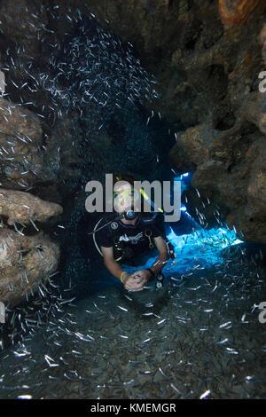 Scuba Diver en medio de escolaridad promelas de vidrio. Imagen De Stock