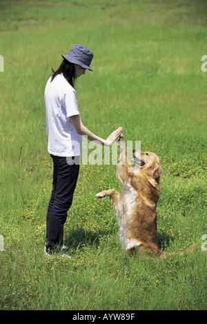 Mujer agitando las manos con un perro en la pradera Imagen De Stock