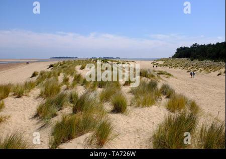 Dunes de sable, wells-next-the-Sea, North Norfolk, Angleterre Photo Stock
