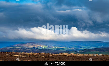 Commondale Westerdale de Moor, North York Moors National Park Photo Stock
