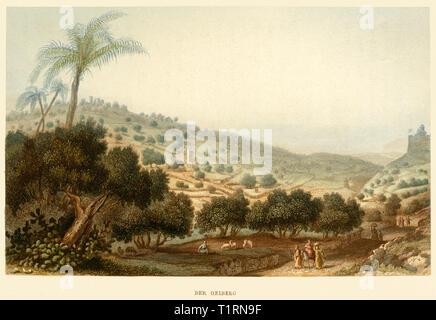 Moyen-orient, Israël, Jérusalem, le Mont des Oliviers, gravure sur acier coloré par Poppel et Kurz après l'Halbreiter, autour de 1861. Copyright de l'artiste , n'a pas à être effacée Photo Stock