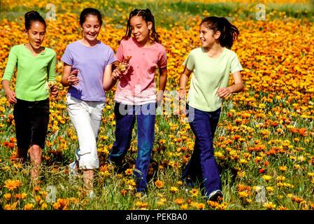 Tween raciale multi heureux garçons et filles préadolescentes heureusement en champ de fleur dans la saison du printemps © Myrleen Pearson ...Ferguson Cate Photo Stock