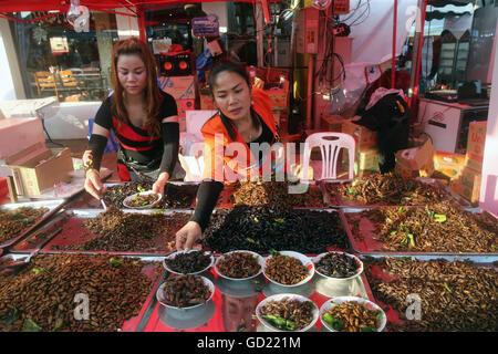 Affichage des insectes frits, Food Market, Vientiane, Laos, Indochine, Asie du Sud-Est, l'Asie Photo Stock