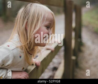 Enfant heureux dans les bois par une clôture Photo Stock