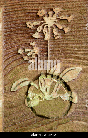 Primula veris coucou bleu fleur sauvage wood grain British UK brun nature symbole sculpture haut-relief naturel Photo Stock