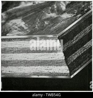 Photographie d'un Plymax coupe, le contreplaqué de marque déposée de Venesta limitée. Les panneaux sont couverts sur une ou deux faces, avec des feuilles de métal. Le métal utilisé peut être galvanisé ou en acier inoxydable, cuivre, aluminium ou bronze. Une insoluble le ciment est utilisé pour fixer les tôles au conseil. Date: 1936 Photo Stock
