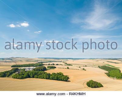 Paysage de l'antenne de l'été le blé et d'orge de l'exploitation agricole les récoltes de champ Photo Stock