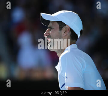 Melbourne Park, Melbourne, Australie. 19 Jan, 2019. Open de tennis d'Australie, jour 6 ; R. de la Serbie a l'air pendant le match contre Denis Shapovalov de crédit du Canada : Action Plus Sport/Alamy Live News Photo Stock