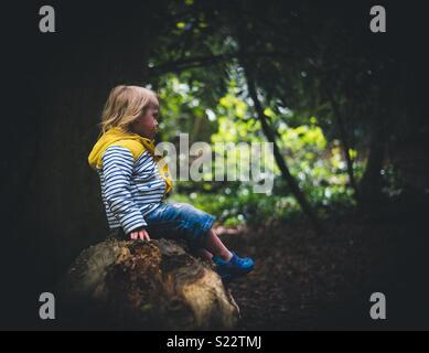 Pensée enfant Photo Stock