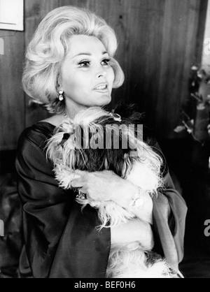 L'actrice et socialite Zsa Zsa Gabor avec son chien dans les années 1970. Photo Stock