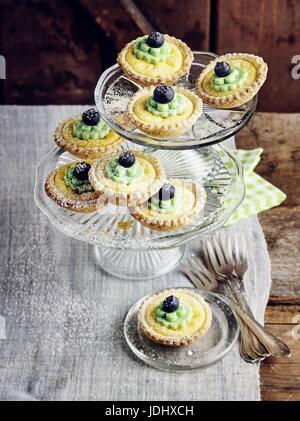 Tartelettes aux bleuets avec caillé Photo Stock