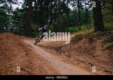 Man mountain biking on dirt trail in woods Photo Stock