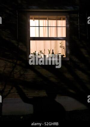 Une fenêtre dans la nuit Photo Stock