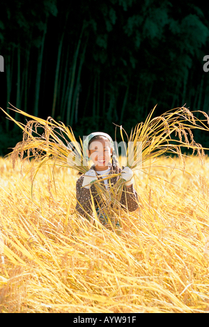 Fille de la récolte du riz Photo Stock