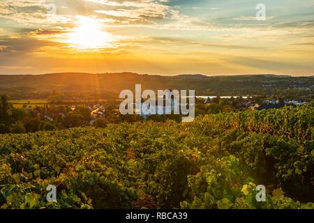 Vignoble avec Castle Hotel, Casino et restaurant 3 étoiles Victor's Residenz, Nennig, vallée de la Moselle, La Sarre, Allemagne Photo Stock