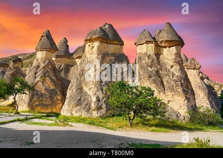 Cheminées de fées, Pasabag, près de Zelve, Goreme, Cappadoce, Turquie Photo Stock