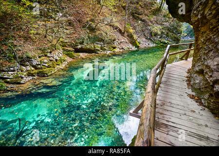 Les Gorges de Vintgar, parc national du Triglav, Alpes Juliennes, en Slovénie Photo Stock