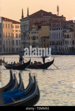 Gondoles sur le grand canal, Venise, Vénétie, Italie Photo Stock