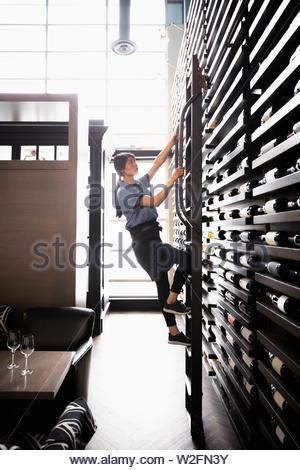 Femme sommelier vin escalade échelle rack Photo Stock