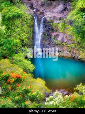Puohokamoa Falls & piscine. Jardin d'Eden les Jardins Botaniques. Maui, HI Photo Stock
