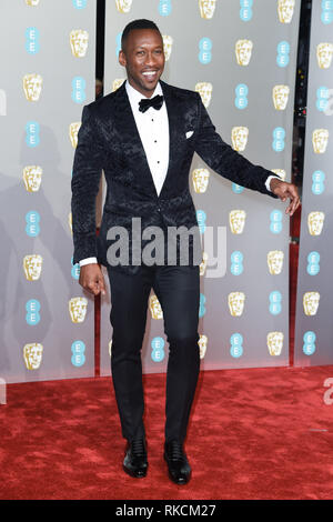 Londres, Royaume-Uni. 10 fév, 2019. Londres, Royaume-Uni. 10 février 2019 : Mahershala Ali arrivant pour le BAFTA Film Awards 2019 au Royal Albert Hall, Londres. Photo : Steve Sav/Featureflash Crédit : Paul Smith/Alamy Live News Photo Stock