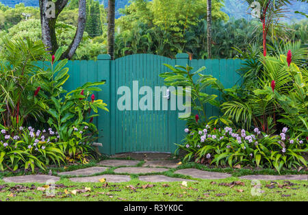 Hanalei, Kauai, Hawaii, fleurs, porte verte Photo Stock