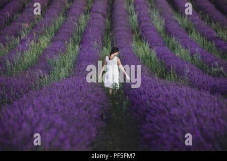 Une jeune fille en robe blanche debout dans un champ de lavande en Provence, France Photo Stock