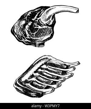 La viande grillée, Installations pour Barbecue côtes levées de porc et de boeuf de la jambe. Barbecue dans le style vintage. Modèle de menu de restaurant, emblème ou logo. Croquis dessinés à la main. Photo Stock