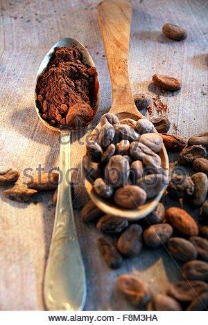 La vie toujours avec des fèves de cacao et le cacao in spoon Photo Stock