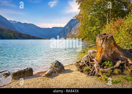 Le lac de Bohinj, parc national du Triglav, Alpes Juliennes, en Slovénie Photo Stock