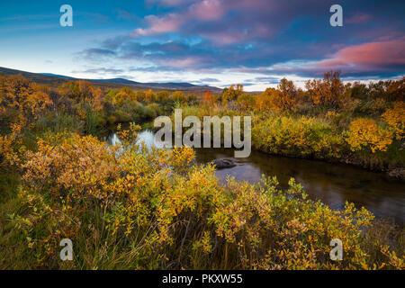 Dovre, Norvège, 16 septembre 2018. Couleurs d'automne à Fokstumyra réserve naturelle, Dovre, la Norvège. Credit: Oyvind Martinsen/ Alamy Live News Photo Stock