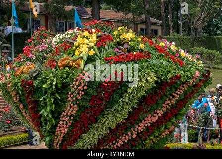 ROSE SHOW JARDIN DE ROSES DU CENTENAIRE À OOTY TAMILNADU Photo Stock