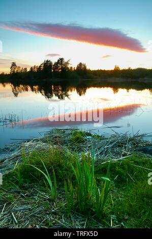 Magnifique coucher de soleil à l'île dans le lac Vansjø Tømmerøya dans Østfold, Norvège. Le lac Vansjø et ses lacs et rivières sont une partie de l'eau appelé système Morsavassdraget. Mai, 2006. Photo Stock