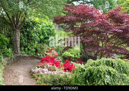Chemin par RHS Wisley Gardens, Surrey, UK Photo Stock
