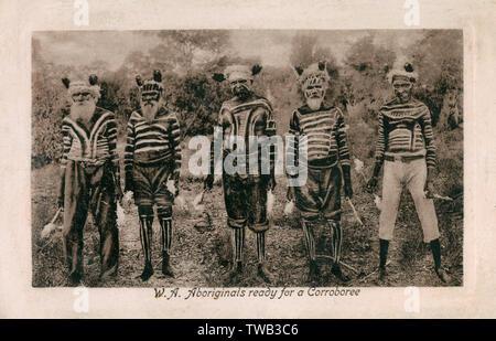 L'ouest de l'Australie, l'Australie - aborigène australien cinq anciens prêts pour un Corroboree (une cérémonie de danse autochtone australien qui peuvent prendre la forme d'un rituel sacré ou un rassemblement informel, où les participants interagissent avec le rêve à travers la danse, la musique et les costumes). Date: 1910 Photo Stock