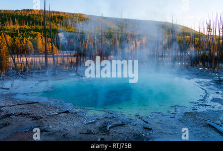 Norris Geyser Basin, Parc National de Yellowstone, États-Unis Photo Stock