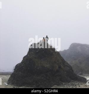 Matin brumeux sur la péninsule Photo Stock