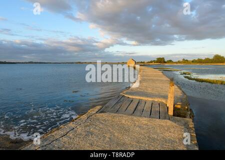France, Morbihan, Arz Île, voyage en canoë-kayak dans le Golfe du Morbihan au coucher du soleil, le moulin à marée de Berno Photo Stock