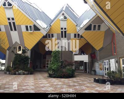 L'avant du cube jaune maisons à Rotterdam, Pays-Bas Photo Stock