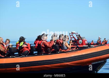 Bateau de vitesse pleine de touristes allant des baleines au large de la côte de l'île de Vancouver, Photo Stock