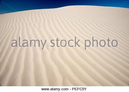 Sand Dollar Beach sur l'île de Magdalena. Photo Stock