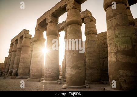 Colonnes dans le temple de Luxor, Luxor, Egypte Photo Stock