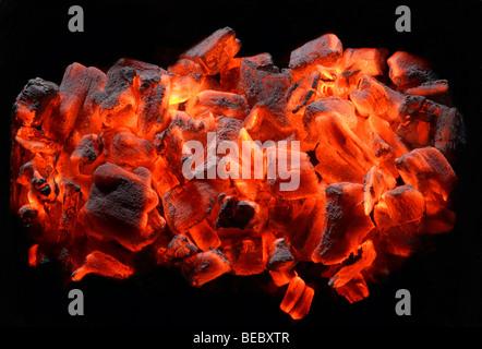 Des charbons ardents, barbecues, l'été Photo Stock