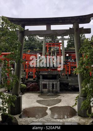 Tori miniature gates Photo Stock