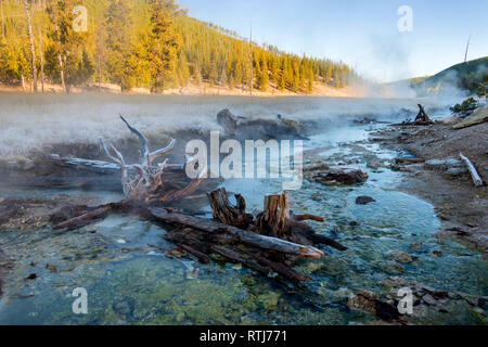Le ruisseau d'obsidienne, le Parc National de Yellowstone, États-Unis Photo Stock