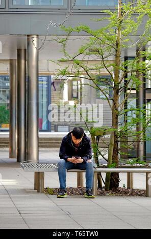 À l'aide d'étudiants assis sur téléphone mobile siège de plein air, UEA, Norwich, Norfolk, Angleterre Photo Stock
