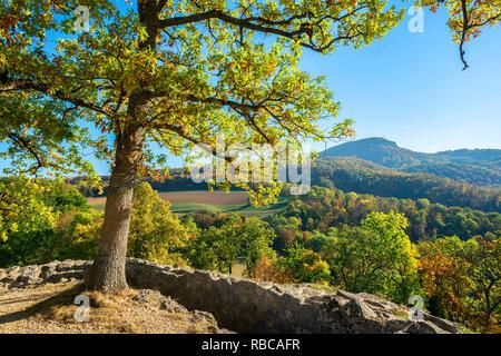Vue depuis les ruines du château Dorneck, Dornach, Soleure, Suisse Photo Stock